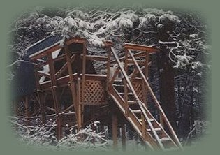 tree houses at the retreat in southern oregon near crater lake national park.